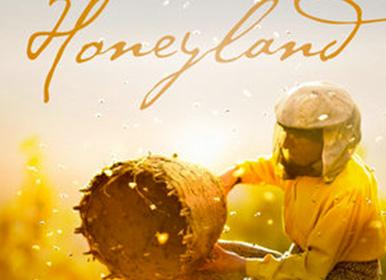 流淌的蜂蜜之诗与灵魂平衡