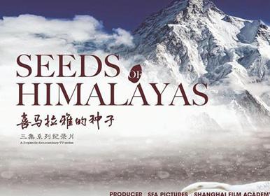 独特视角讲述中国故事 《喜马拉雅的种子》在威尼斯电影节展映