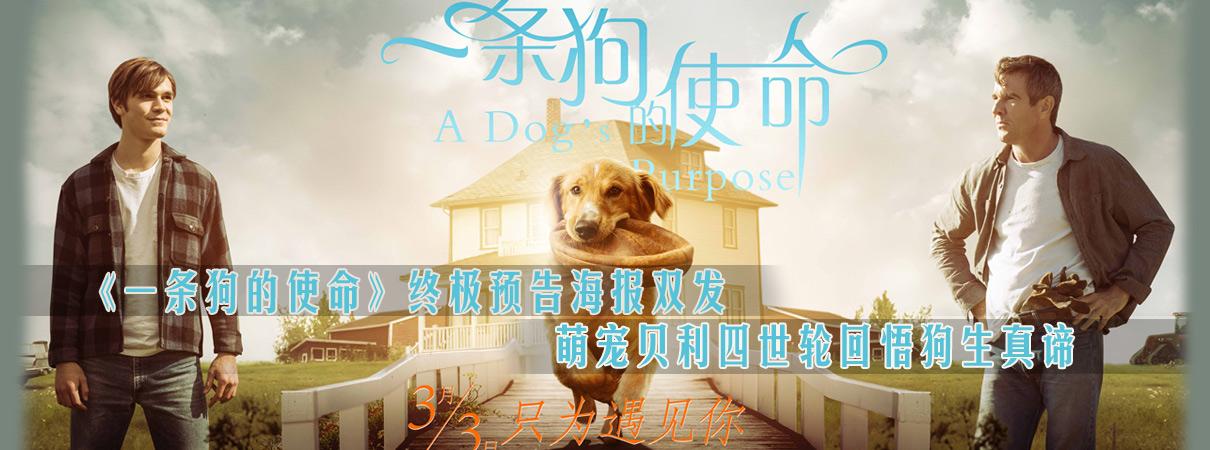 《一条狗的使命》预告